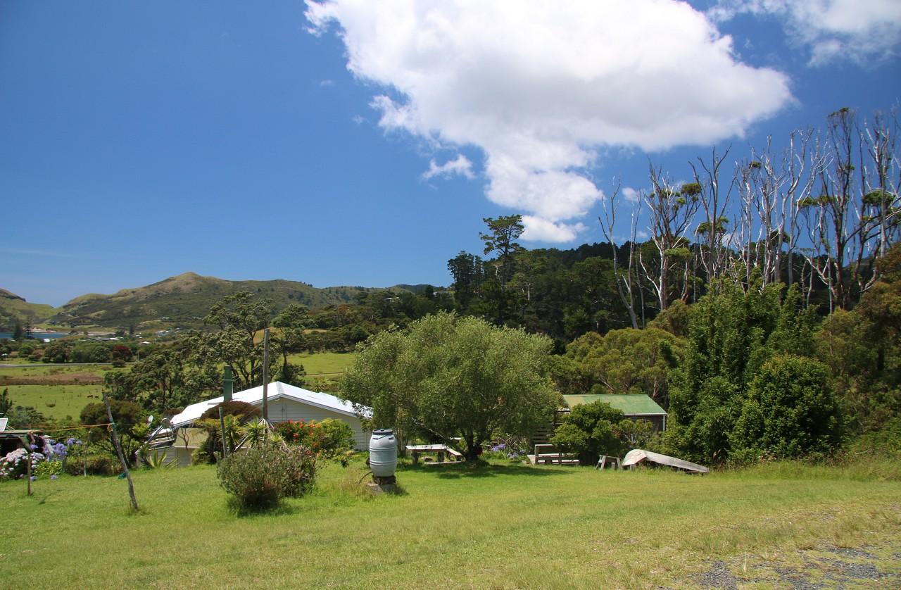 NZ2015_0105.jpg