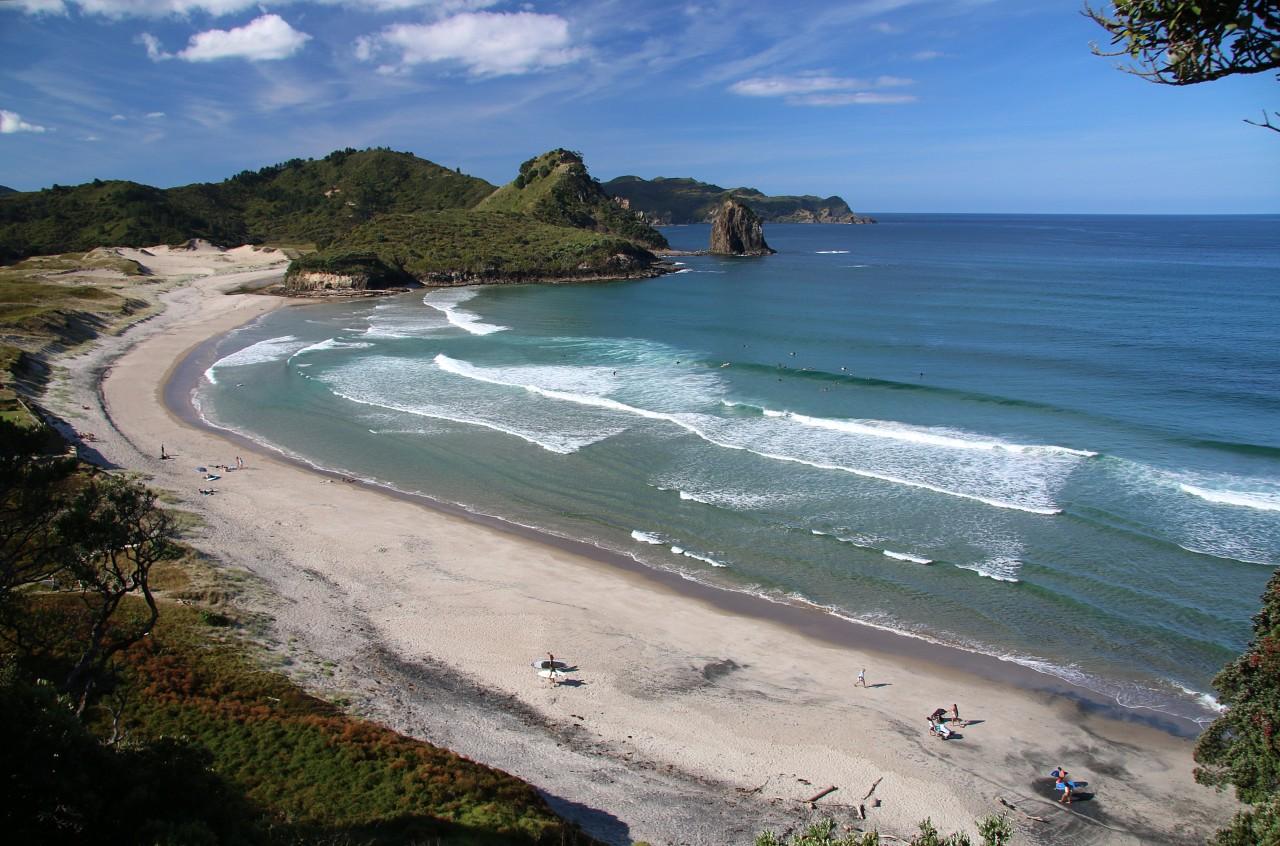 NZ2015_0180.jpg