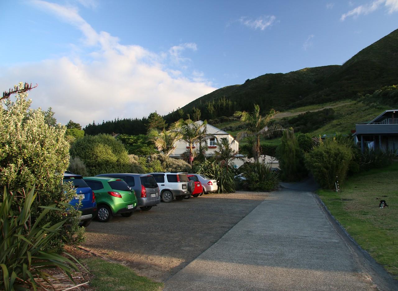 NZ2015_0440.jpg