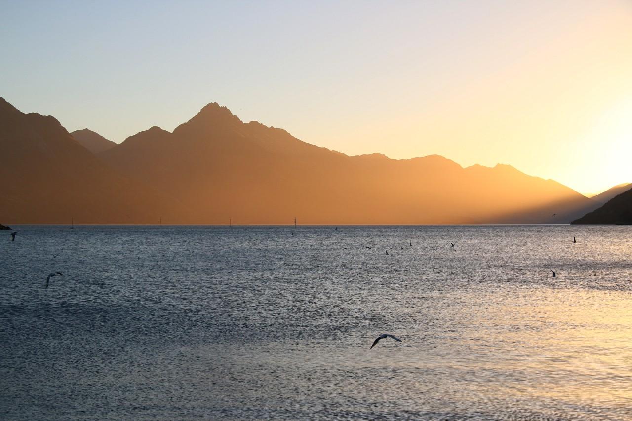 NZ2015_0843.jpg