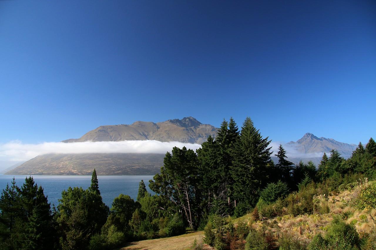 NZ2015_0889.jpg