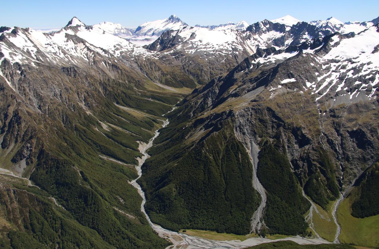 NZ2015_0935.jpg